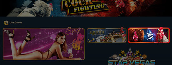 cock-fighter-venus-casino