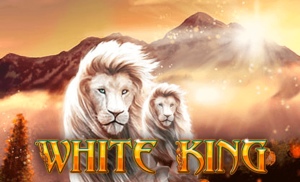 สร้างเงินด้วยเกม สล็อต WHITE KING hungry888